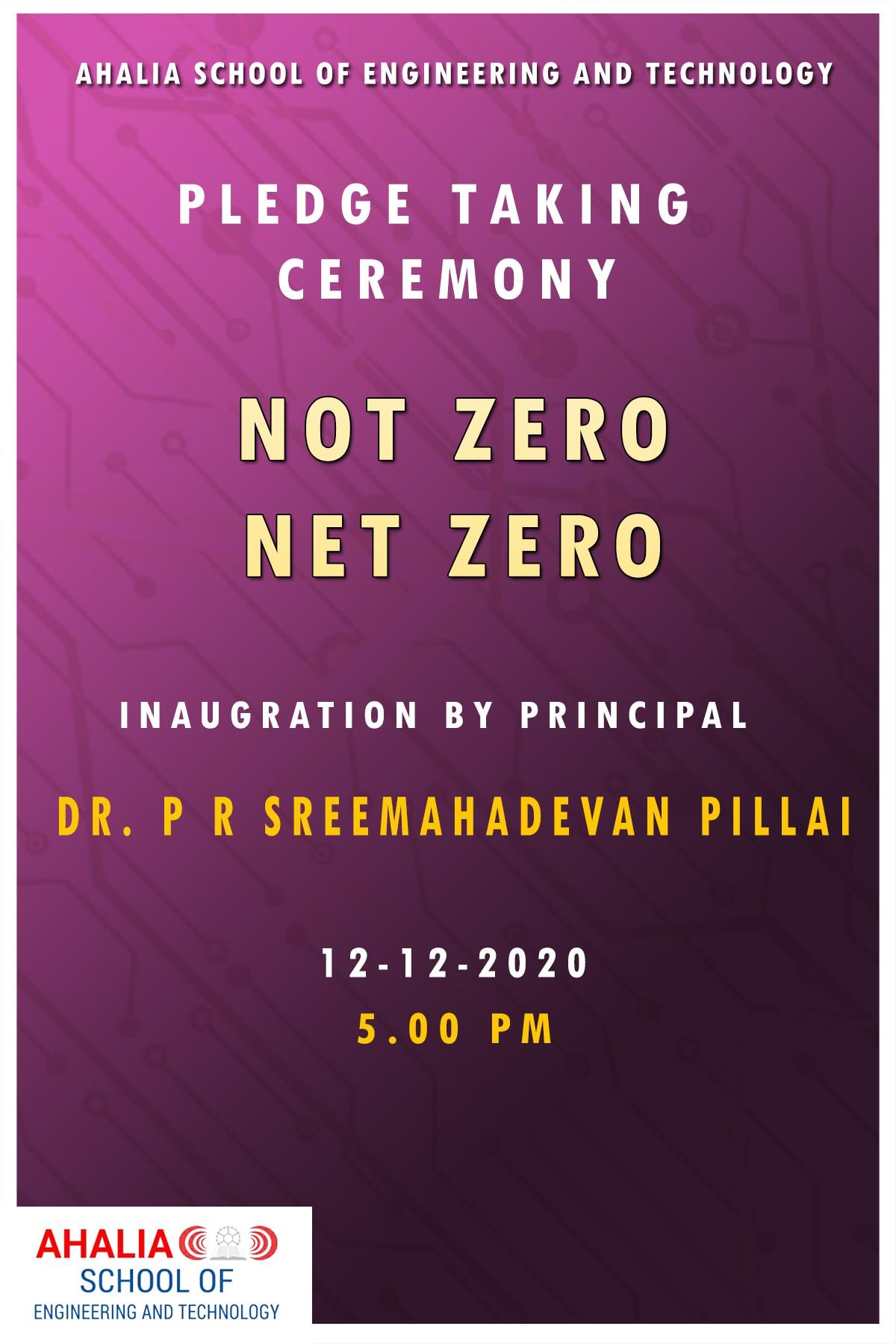Pledge – 'Not Zero Net Zero'